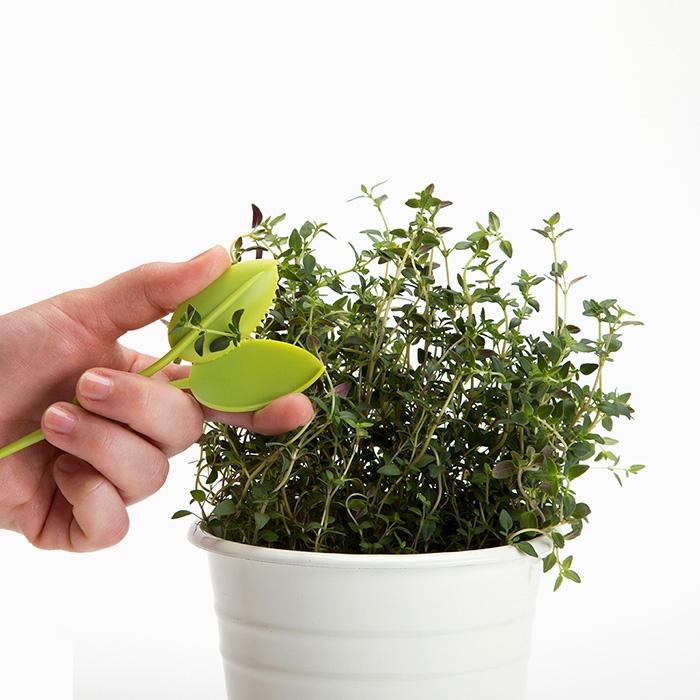 Leafers קוצץ צמחי תבלין