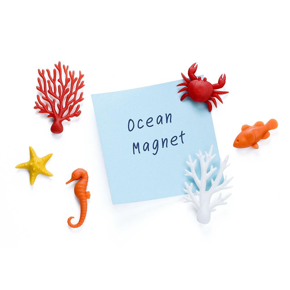 סט של 6 מגנטים אוקיינוס אקולוגי